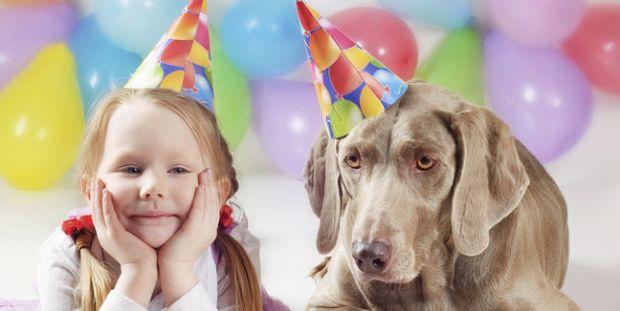 mascotas-edad-cumpleanos_MUJIMA20121123_0021_6