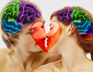 cerebro_amor